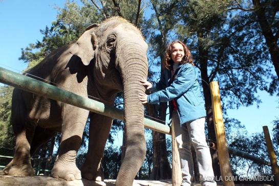 Zoo Luján na Argentina