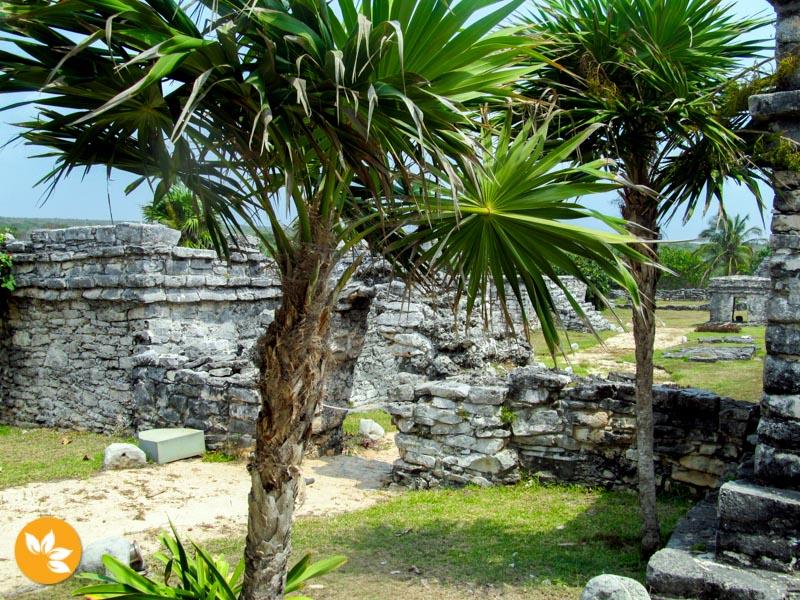 Tulum e as ruínas Maias