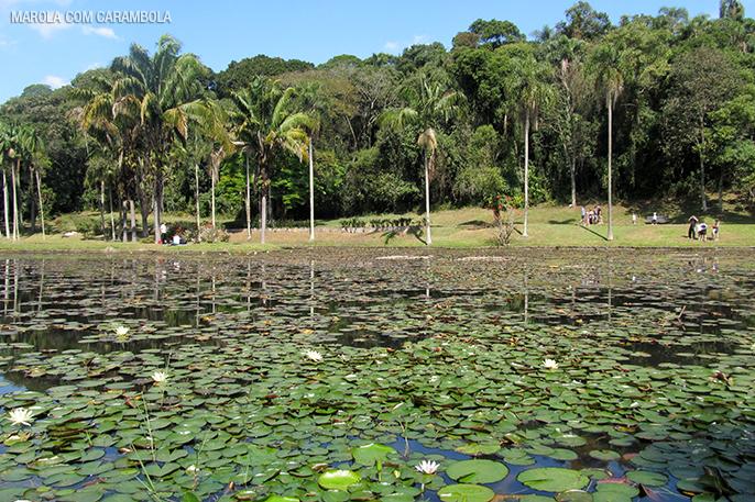 Lago dasNinfeias