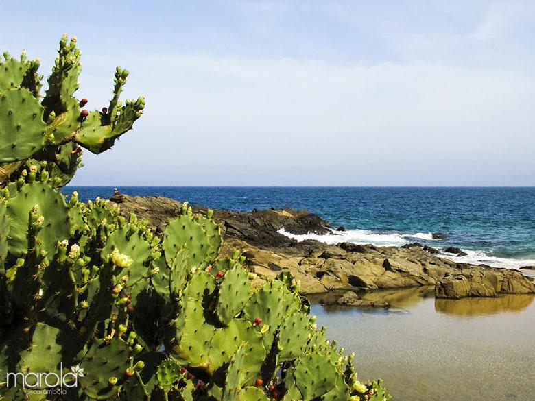 Fonte: SXC.Hu - Salvador - Os 10 melhores destinos para viajar no Brasil