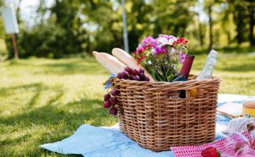 Como fazer um picnic perfeito