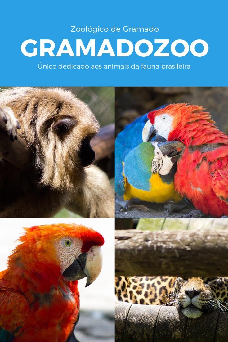 O Zoológico de Gramado é o único do país dedicado apenas aos animais que pertencem a fauna brasileira e uma das 10 atrações para se conhecer na cidade.