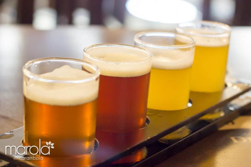 Degustação de cerveja na BierHoff Estação