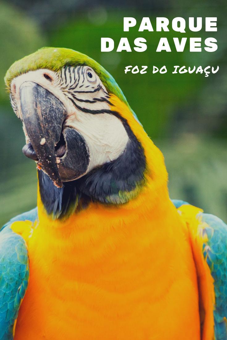 Um dos atrativos da cidade de Foz do Iguaçu é o Parque das Aves que tem mais de 1100 aves e 140 espécies diferentes para você conhecer e apreciar!