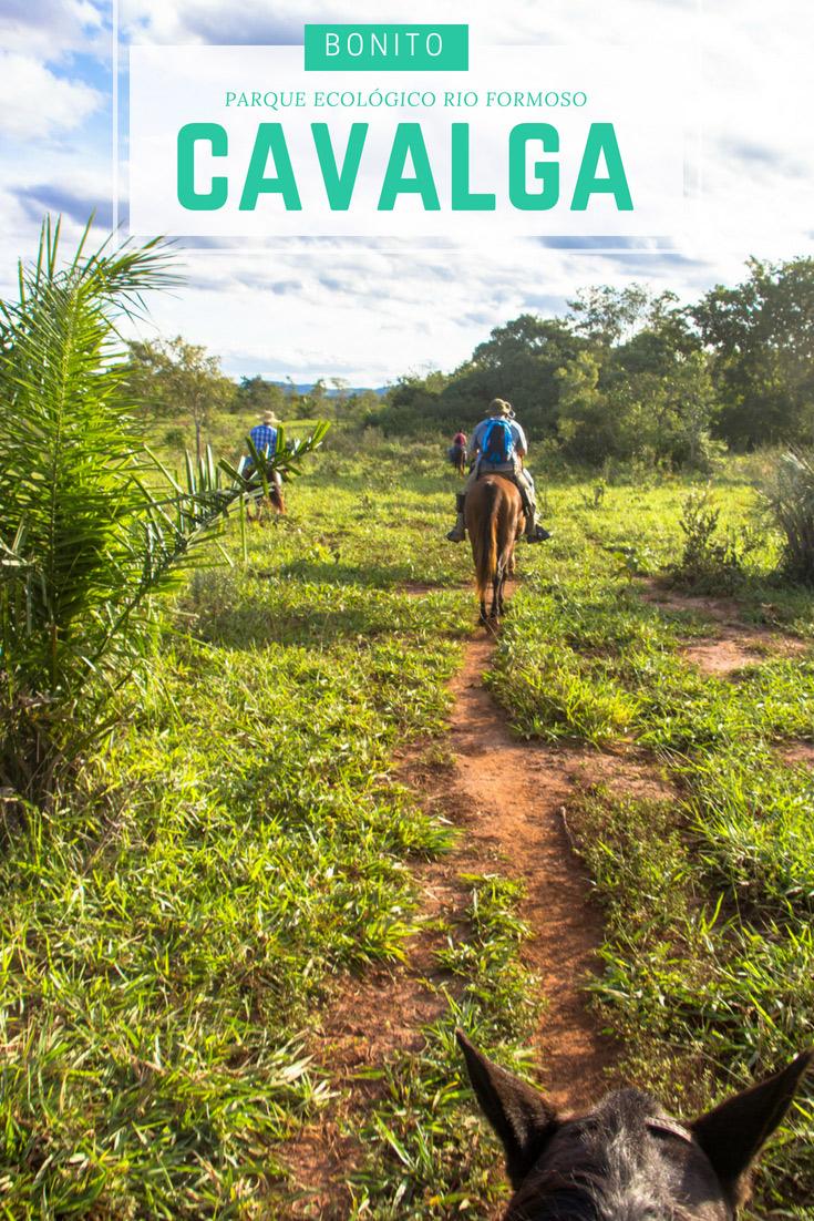 A Cavalgada no Parque Ecológico Rio Formoso é um passeio recheado de natureza, no meio da mata ciliar do Rio Formoso que vale muito a pena fazer em Bonito.