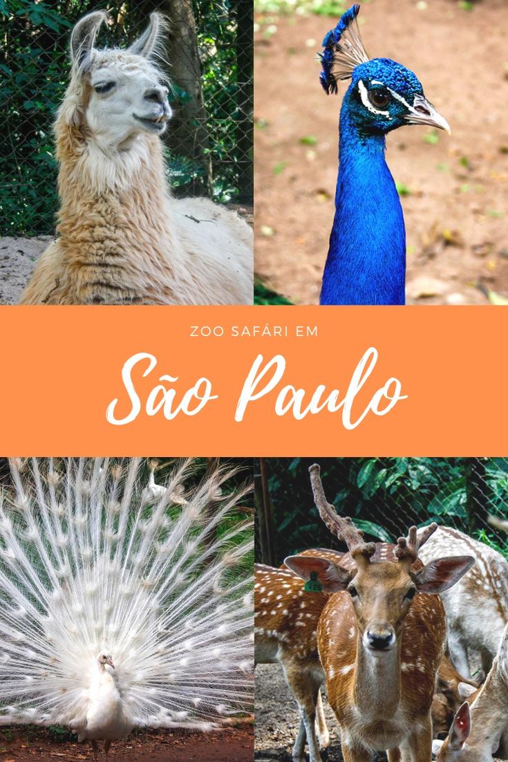 Zoo Safari em São Paulo - Já pensou que você pode fazer um safári dentro da cidade sua cidade? Descubra aqui, onde e as curiosidades deste passeio.
