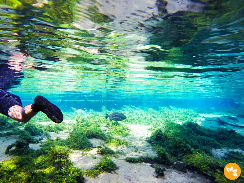 Flutuação no Rio da Prata - 5 lugares para viajar no Brasil em 2016