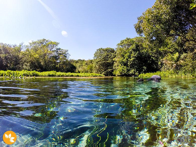 É hora de descer o Rio Sucuri