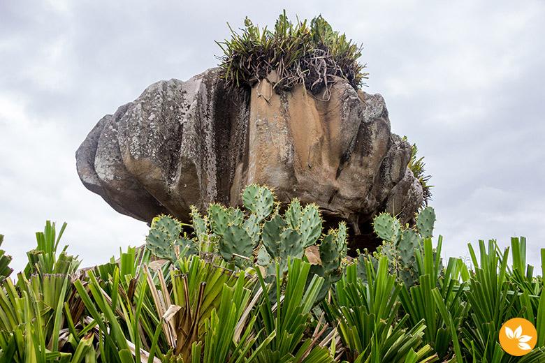 Parque Pedra Cebola