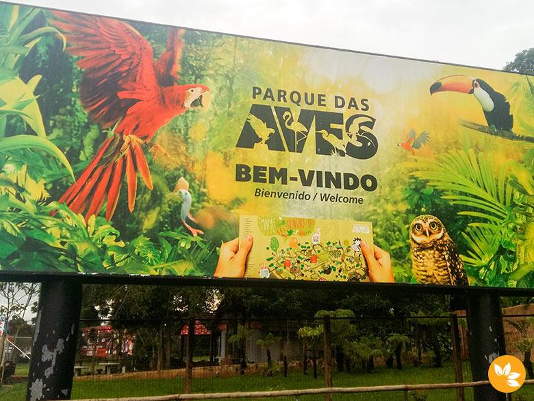10 motivos para conhecer o Parque das Aves - Foz do Iguaçu