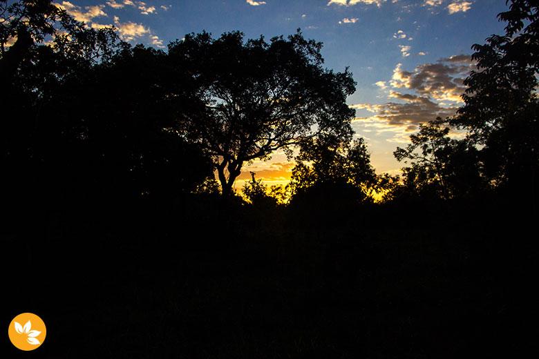 Por do Sol no Passeio a Cavalo na Estância Mimosa