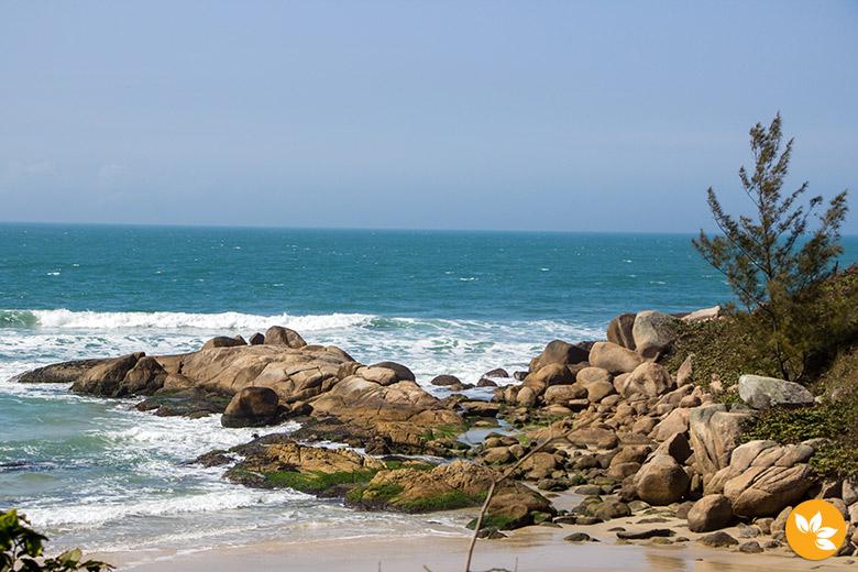 O que fazer na Praia do Rosa – Litoral Sul de Santa Catarina