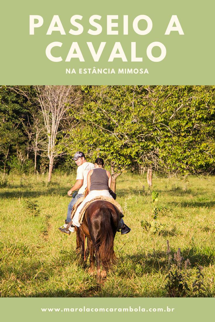 Passeios em Bonito - o Passeio a Cavalo na Estância Mimosa contempla vistas panorâmicas e cenários privilegiados da Serra da Bodoquenha. Vale a pena!