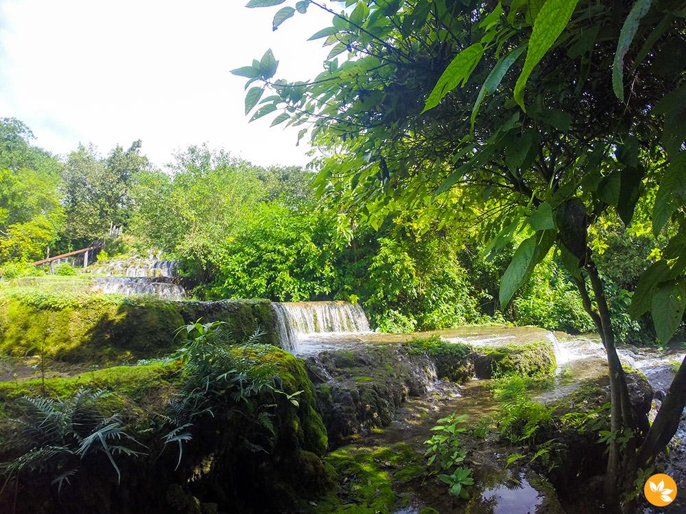 Bonito - Flutuação na Nascente Azul - Cachoeiras de Tufas Calcarias