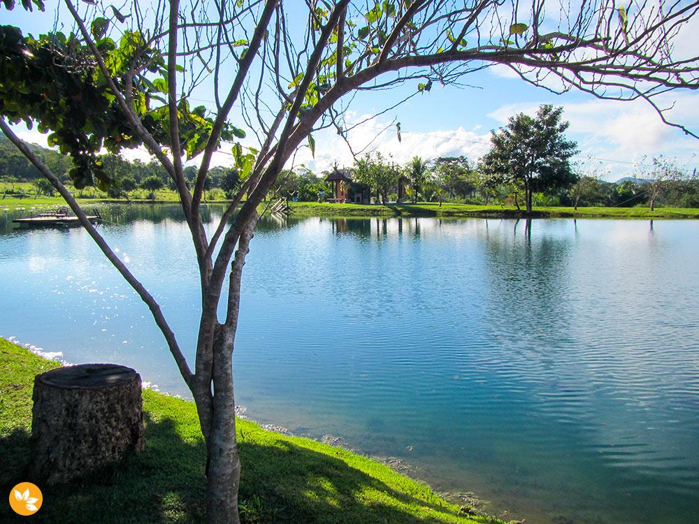 Bonito - Flutuação na Nascente Azul - Lago da Capela