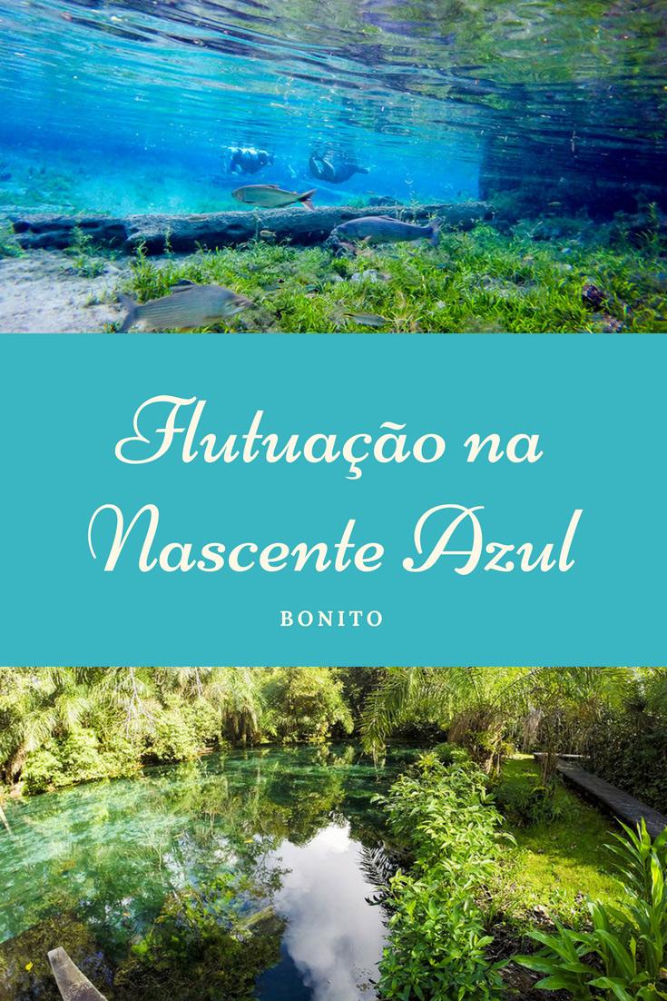 A Flutuação na Nascente Azul é um dos passeios de Bonito imperdíveis. Com rio de coloração turquesa, muitos de peixes e perfeita para todas as idades.
