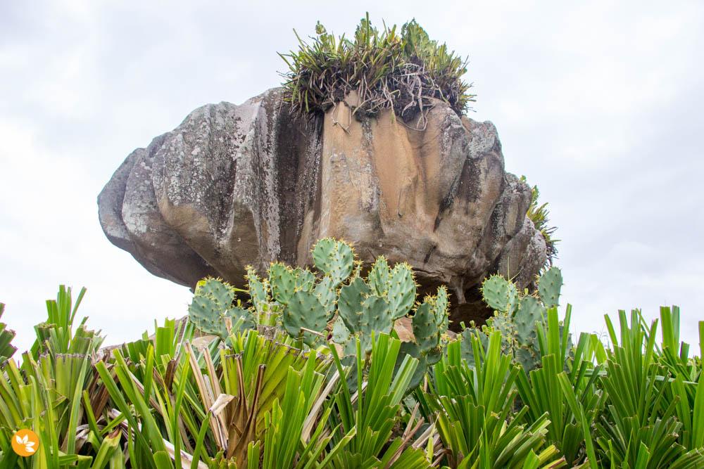 O que fazer em Vitória - Parque Pedra da Cebola