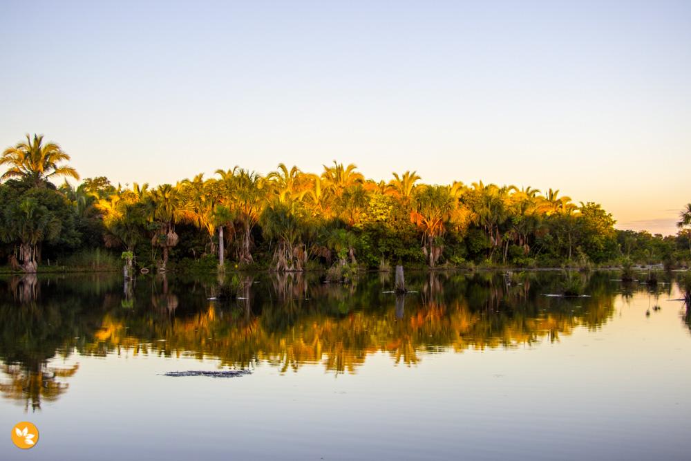 Bom Jardim – Nobres: Lagoa das Araras
