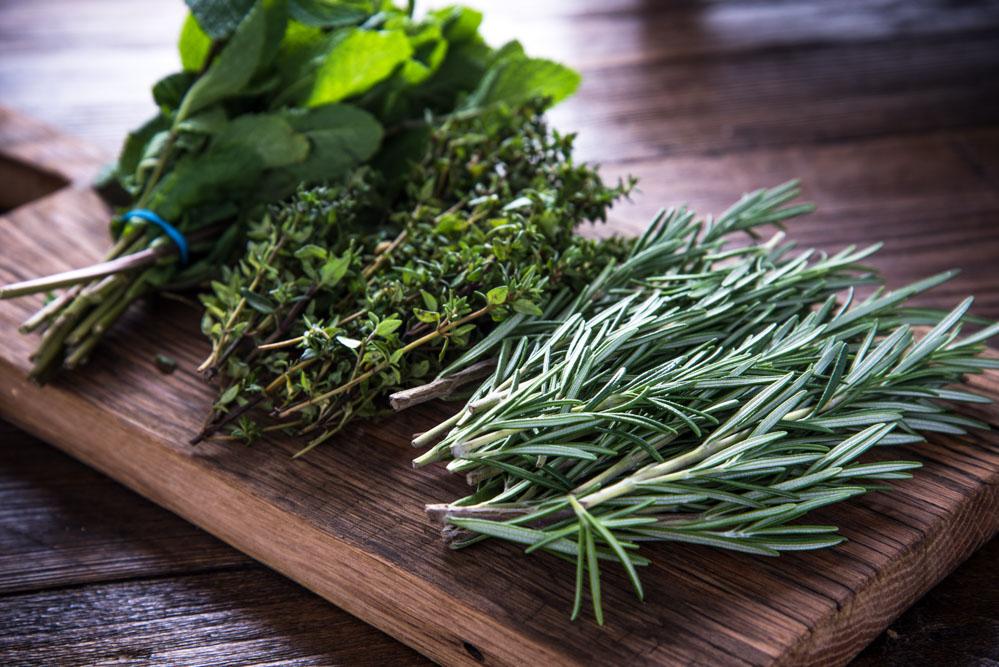 7 temperos e especiarias indispensáveis na cozinha - Ervas