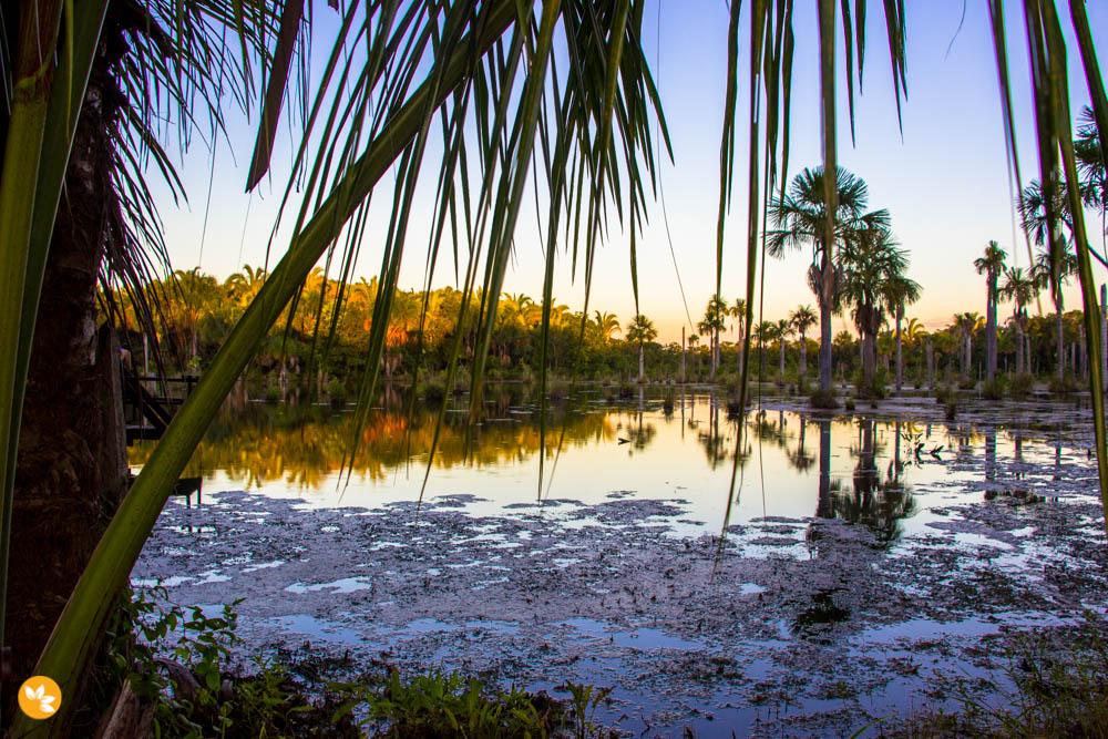Pôr do sol na Lagoa das Araras