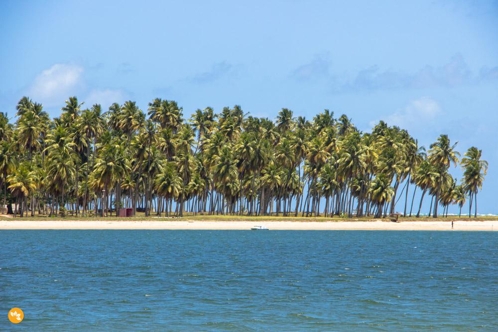 Praia dos Carneiros - Uma das praias mais bonitas do Brasil