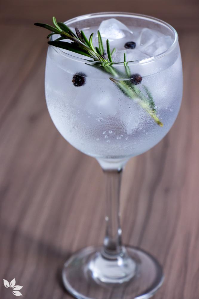 Receitas de Gin Tônica - Alecrim e Zimbro