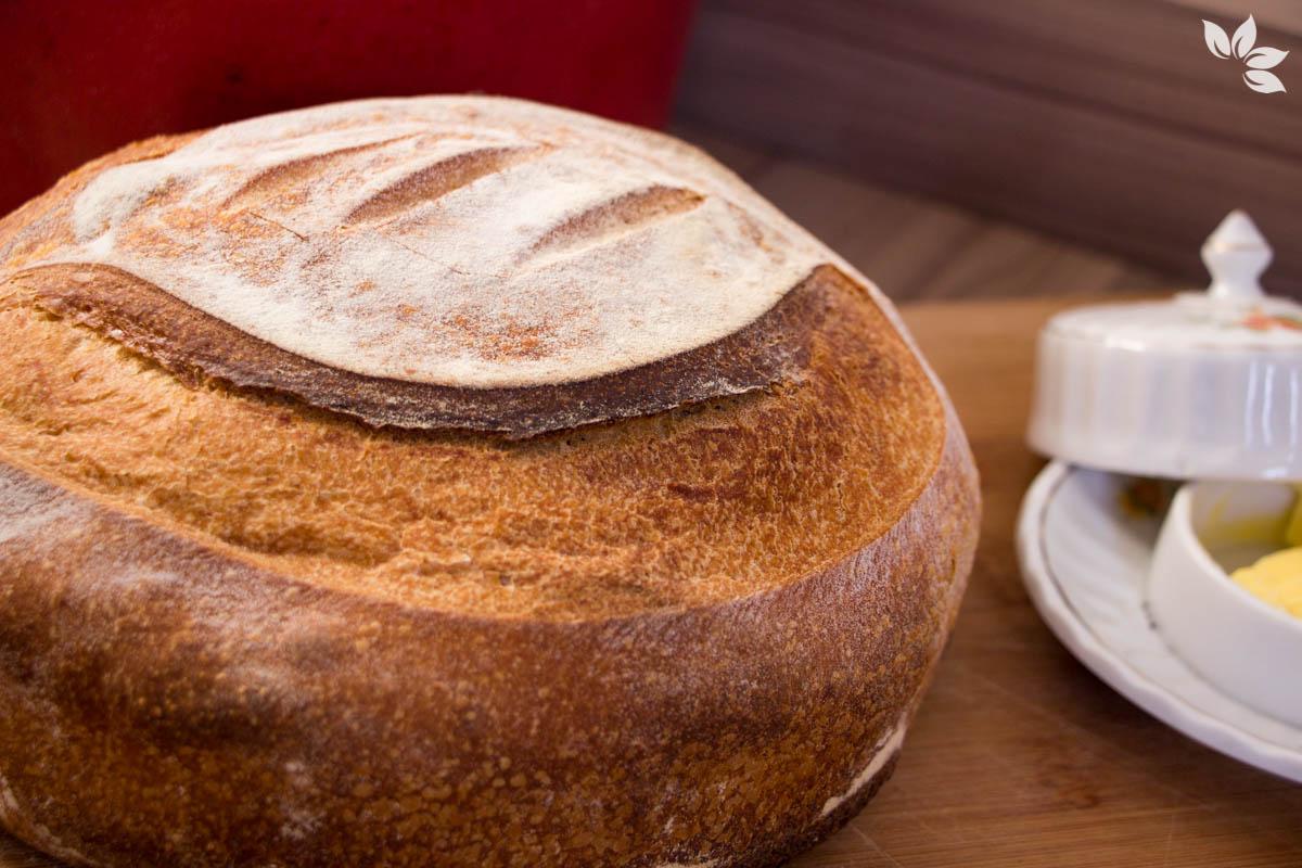 Receita de pão italiano com Levain